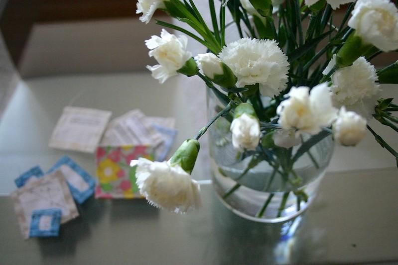 hyacinthus_6_20121111 - Version 2