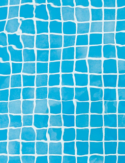 Warped Grid (Swimming Pool)