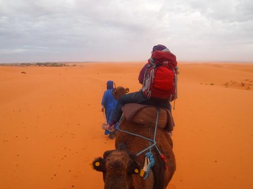 travel sahara digital pen sunrise lite tour ride desert olympus camel morocco camels 日出 駱駝 沙漠 m43 自助旅行 1442 摩洛哥 1442mm 撒哈拉 騎駱駝 epl1 microfourthird mzuiko