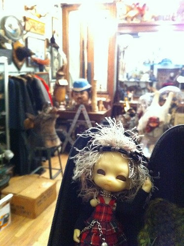 Inside Oddities TV Show Obscura Antiques For Some PowerMosT Shop'nZ! by DollZWize