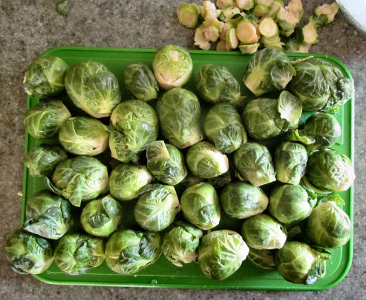 Brussels sprouts Trimmed