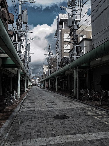 2012.11.21(R0010750_Dark Contrast