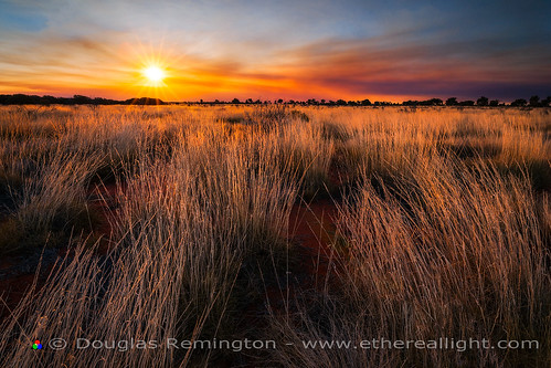 Outback burn and sunstar, Uluru-Kata Tjuta national park, Australia by Douglas Remington - Ethereal Light™ Photography