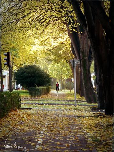 Bidegorri otoño donostia