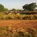 Rural community in The Gambia by Ed Drewitt