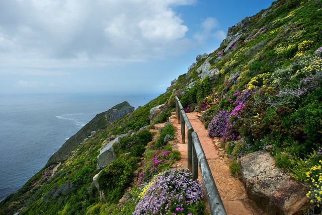 the real Garden Route