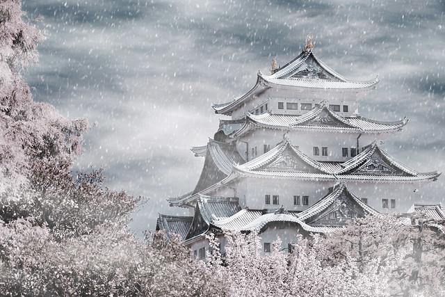 Japan Nagoya . 日本.名古屋. Nagoya Castle 雪隱 - 名古屋城 IR紅外線攝影 DSC_01762