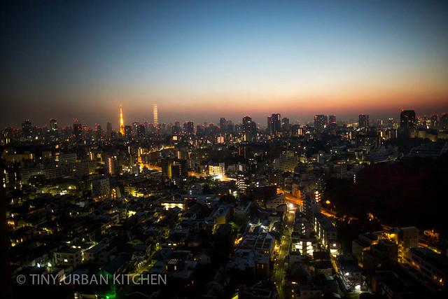 Tokyo Skyline view from Westin Tokyo