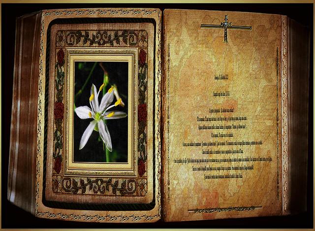 Evangelio según San Lucas 3,10-18. Obra Padre Cotallo