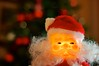 341/366: Santa is coming
