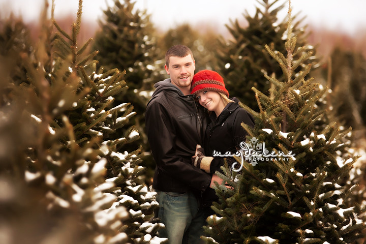 Green Bay Christmas Tree Farm Engagement Portraits » Magdalene ...
