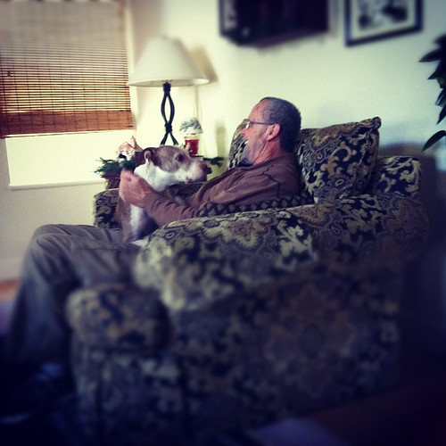 "Mina loves ""grandpa"" #dog #pitbull #vegandog"
