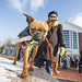 20121208_mac_dogdays_178