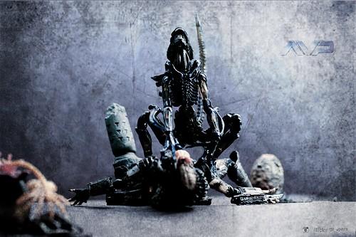 AVP - Alien vs Predator - Revoltech (Kaiyodo)