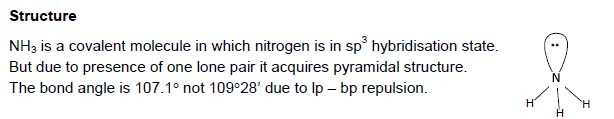 Chemistry Notes: The p Block Elements - Ammonia
