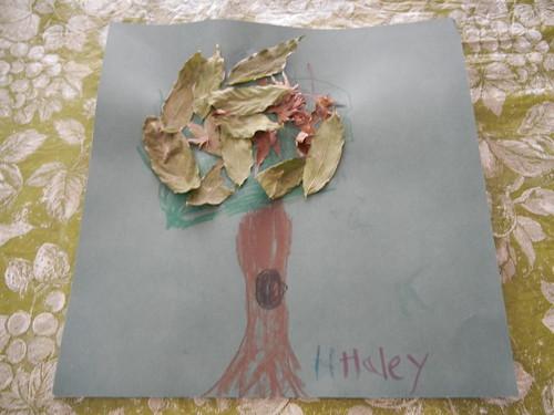 Nov 19 2012 Haley