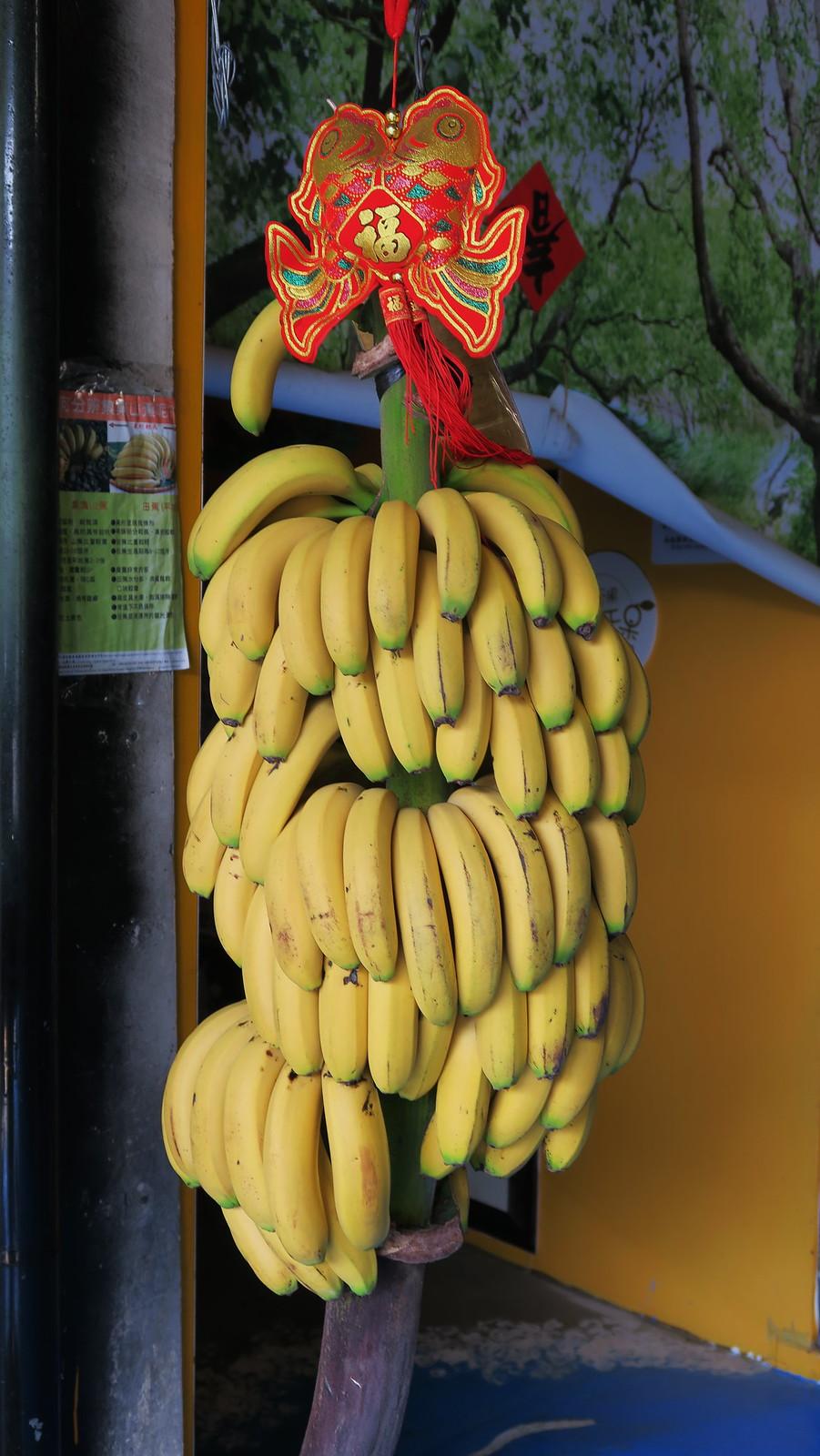 集集山蕉文化館 (21)