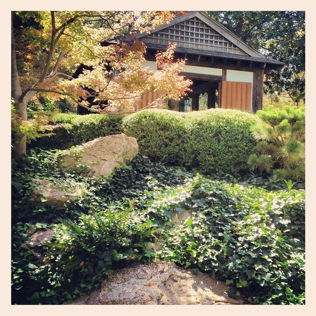 Japanese Garden Fall Autumn Fort Worth Texas Botanical Gardens 1912 Flickr Photo Sharing