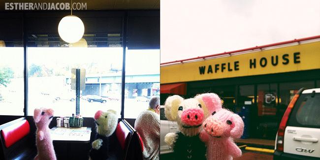 wafflehouse | travelingpigs