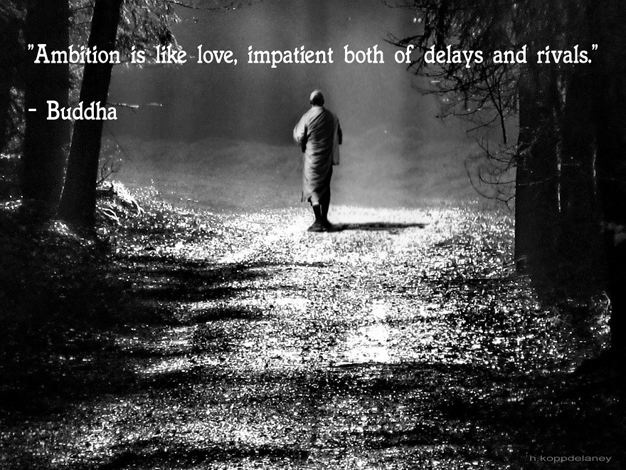 Buddha Quote 101 A Photo On Flickriver
