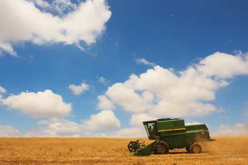 brazil sky verde southamerica branco azul brasil clouds rural canon cores céu amarelo nuvens agriculture riograndedosul trigo américadosul agricultura colheita colheitadeira dircinha brasilemimagens gtyok maquinaagrícola