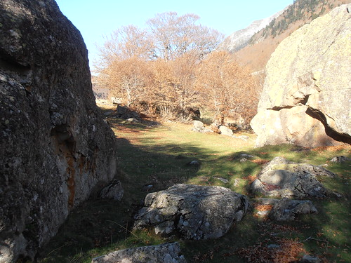 Pont de Camps 114