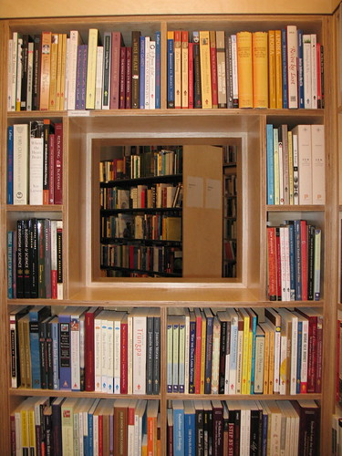 Bookshelf Window