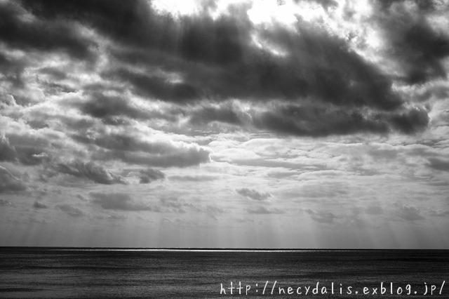 horizon...
