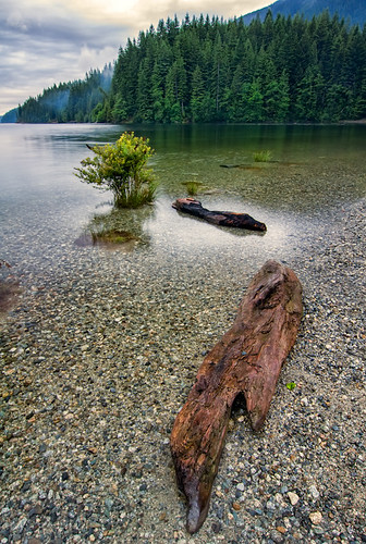 park wood travel trees wild vacation sky mountain lake canada green tourism beach nature water beautiful stone vancouver clouds rural forest sunrise river landscape outside golden coast maple log scenery rocks colorful day view riverside natural cloudy outdoor britishcolumbia vibrant scenic dramatic rocky peaceful overcast ears wideangle nobody scene columbia pebbles calm hills ridge shore silence destination environment british leisure wilderness transparent relaxation idyllic mapleridge tranquil provincial pristine goldenearsprovincialpark