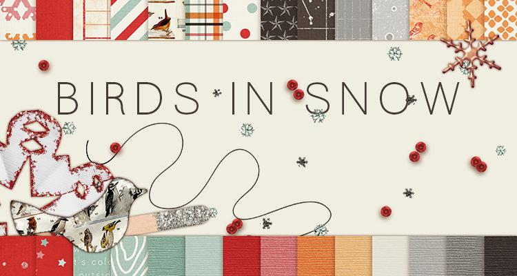 Birds in Snow Kit