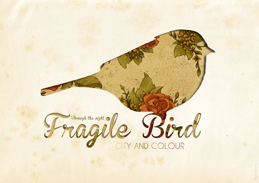 Fragile bird