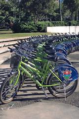 bicicletas de la municipalidad
