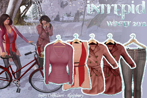 NEW!!! Intrepid:: Winter 2012 Raspberry