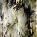 Totem 24 by Gringovitch