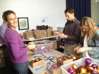 USBG staff at work decorating for holiday exhibit