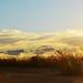 Sufriendo al atardecer by RAUL GH