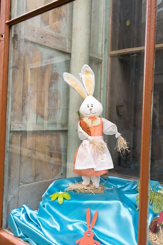 Rabbit in the Shop Window