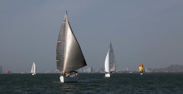 Le vent dans les voiles | Wind in the sails | El viento en las velas