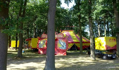 Circus Brunselli