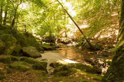 La rivière des fées