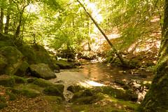 La rivière des fées - Photo of Jeansagnière