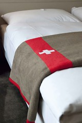 cushion(0.0), duvet cover(1.0), textile(1.0), furniture(1.0), red(1.0), bed sheet(1.0),