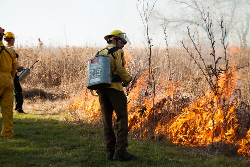 Burning biocore prairie - 20121108 - 23