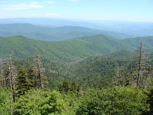 Smoky Mountains Clingman Dome