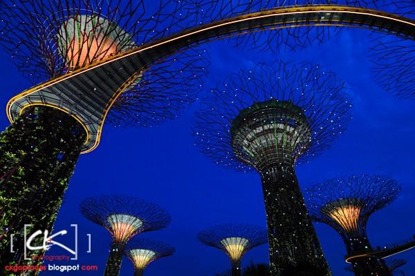 Singapore_0140