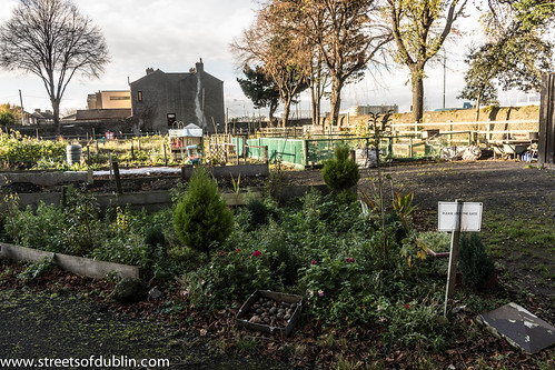 Ringsend Community Garden by infomatique