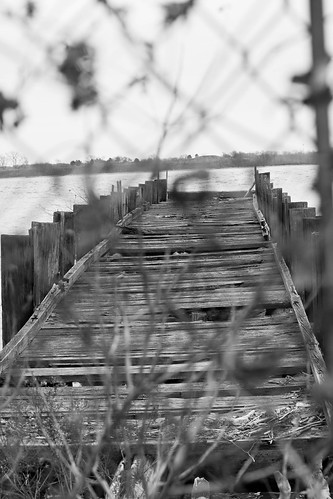 Decaying Pier - Hog Island