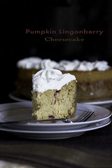 Pumpkin Lingonberry Cheesecake