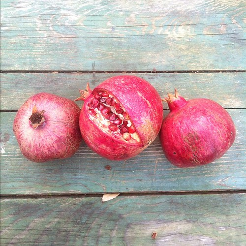 Pomegranates picked from the tree in my garden.