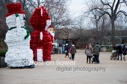 20121123-thanksgiving-41.jpg